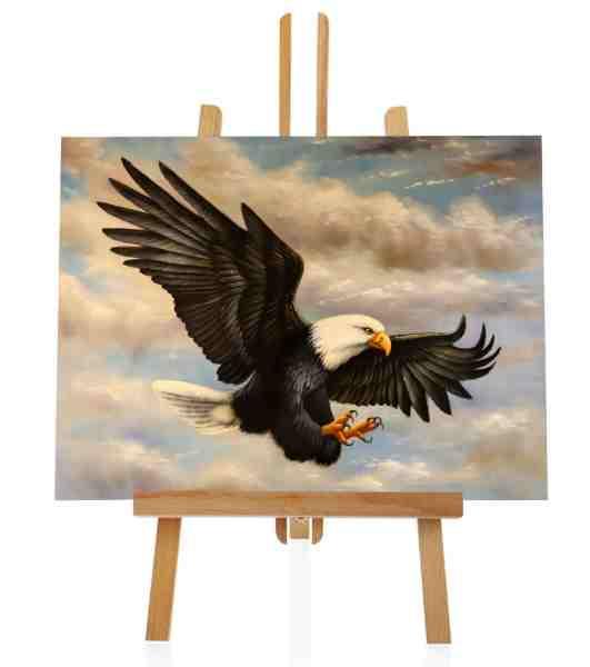 Gemälde vom American Eagle